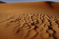 31_desert_01.JPG