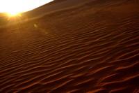 31_desert_03.JPG