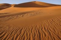 31_desert_04.JPG