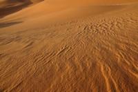 31_desert_05.JPG