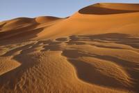 31_desert_06.JPG