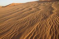 31_desert_07.JPG