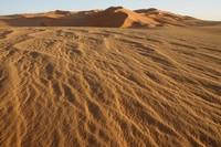 31_desert_08.JPG