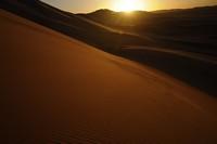 31_desert_12.JPG