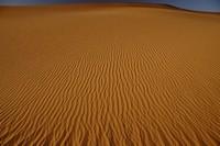 31_desert_13.JPG