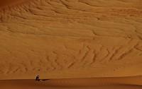 31_desert_18.JPG