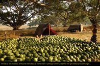 Birma_18.JPG