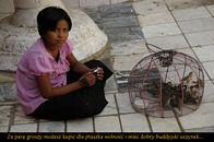 Birma_38.JPG