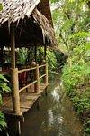 02B_Chiangmai3.JPG