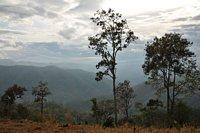 03B_Chiangmai1.JPG